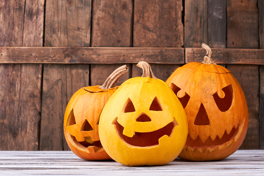 Fall fun for the family at local churches